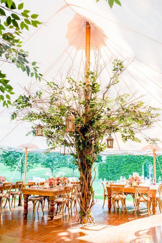 Esküvői dekoráció növényekkel