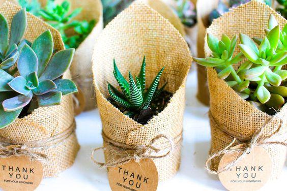 Környezetbarát ajándék vendégeknek